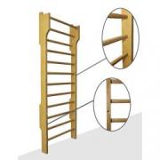 Gymnastic ladders (wall bars), Kharkov delivery